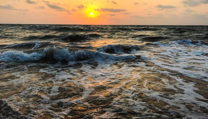 Goa – A harsh Reality!