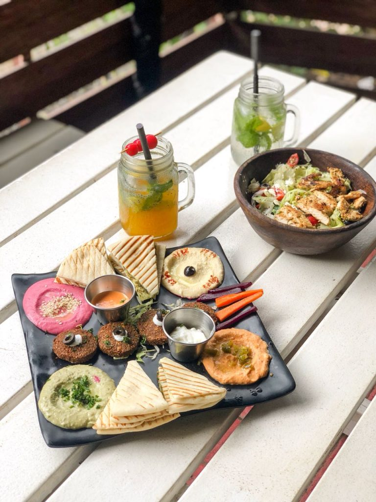 Hummus platter, Greek salad, grilled chicken, Chicken Salad